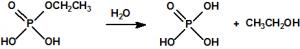 Hidrolisis1