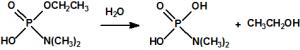 Hidrolisis3