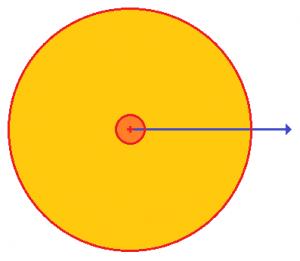 zonpelig-circular